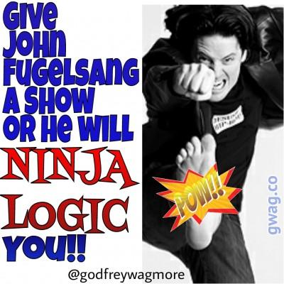 wpid-ninjalogic1.jpg