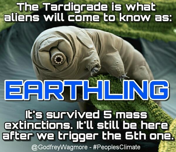 wpid-tardigrade.jpg